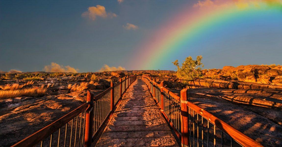 rainbow-830829