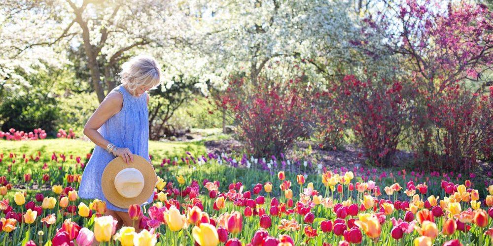 spring-2298280_1920